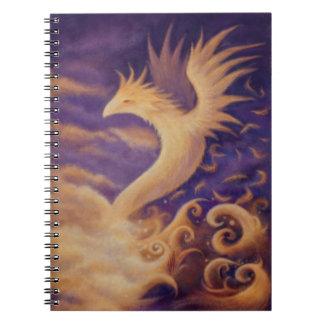 Phoenix - notebook
