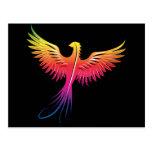 Phoenix rising flame colours postcard