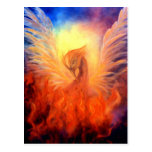 Phoenix Rising Postcard