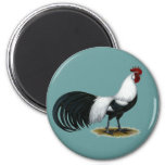 Phoenix:  Silver Duckwing Rooster Fridge Magnet