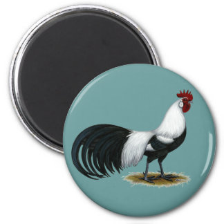 Phoenix:  Silver Duckwing Rooster Magnet