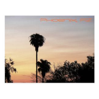 Phoenix Sunset Postcard