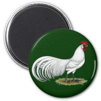 Phoenix:  White Rooster Magnet