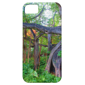 Phone case: Virgin Gorda iPhone 5 Covers