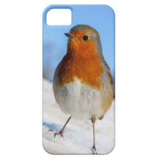 Phone case with European robin in winter snow