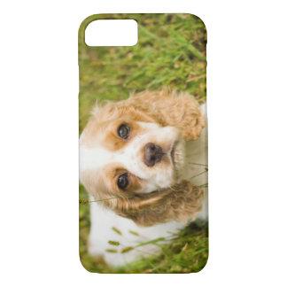 Phone Cases - Cocker Spaniel Puppy