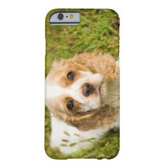 Phone Cases - Cocker Spaniel Puppy Barely There iPhone 6 Case