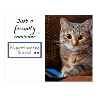 Phone kitty appointment reminder postcard