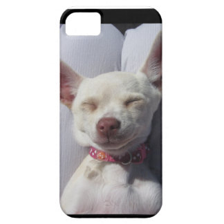 phone skin dog puppy chi white canine love iPhone 5 cover