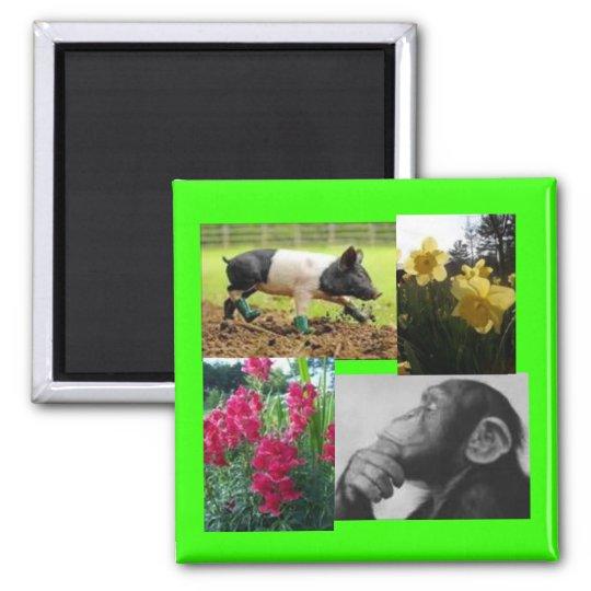 Photo collage square magnet