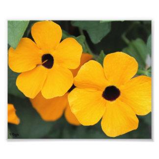 Photo Enlargement - yellow flowers