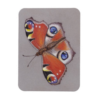 Photo Magnet / Peacock Butterfly