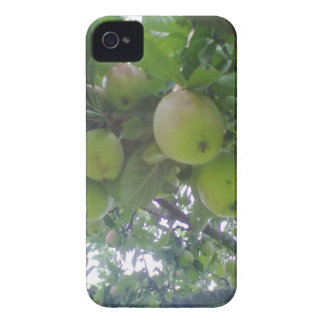 Photo Mobile Case Iphone 4 mate id