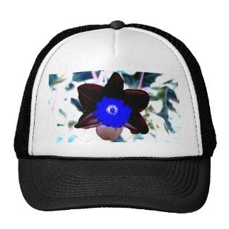 Photo Negative Daffodil Cap