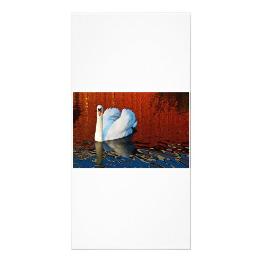 Photo Note Card-Blank Inside Photo Card Template
