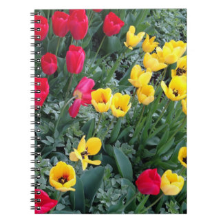Photo notebook tulip bed