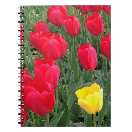 Photo notebook tulips