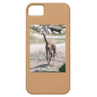 Photo of a baby giraffe walking in nature barely there iPhone 5 case