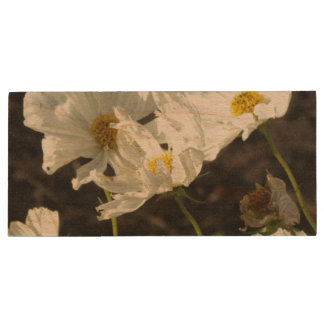Photo of a Flower Bed of White and Gold Daisies Wood USB 2.0 Flash Drive