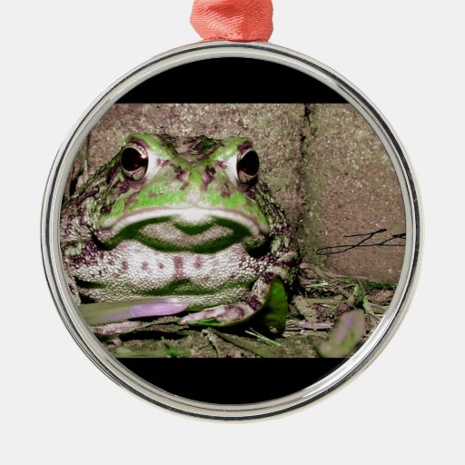 Photo of a funnycolorful fat toad frog christmas tree ornament