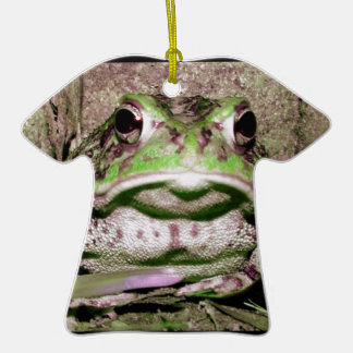 Photo of a funnycolorful fat toad frog christmas tree ornaments