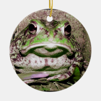 Photo of a funnycolorful fat toad frog round ceramic decoration