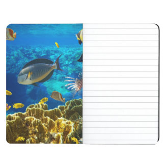 Photo of a tropical Fish on a coral reef Journal