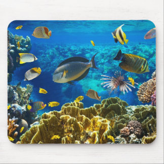 Photo of a tropical Fish on a coral reef Mouse Mat