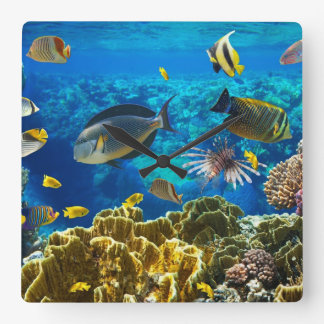 Photo of a tropical Fish on a coral reef Wall Clock