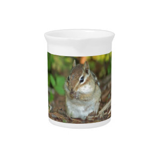 Photo of adorable chipmunk beverage pitchers