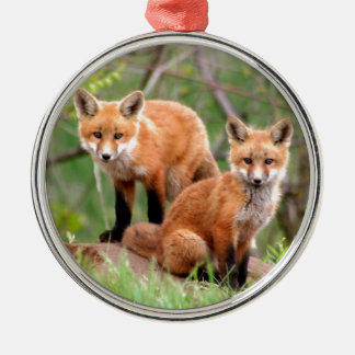 Photo of adorable red fox kits christmas ornament