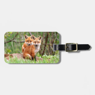 Photo of adorable red fox kits sitting together luggage tag