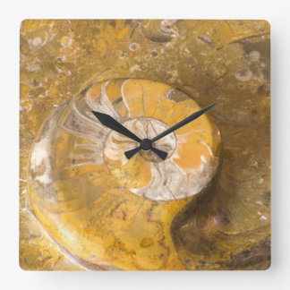 Photo of Carved Bowl Made of Fossils in Rock Wallclock