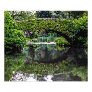 Photo of Central Park Landscape