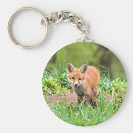 Photo of curious fox kit basic round button key ring