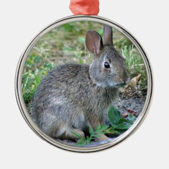 Photo of cute bunny christmas ornament