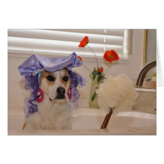 "Photo of dog ""indulging"" in tub greeting card"