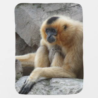 Photo of Orange and Black Gibbon Relaxing on Cliff Pramblanket
