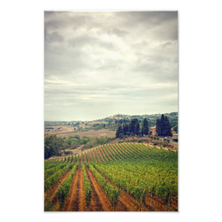 Photo of Tuscany vineyard with gloomy sky