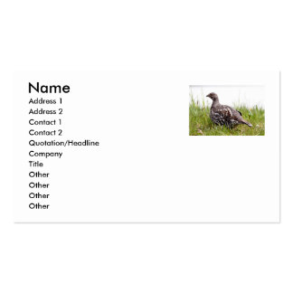Photo of Wild Grouse Business Card Template