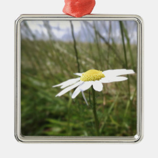 Photo taken by CarlyLouPhotography in Lincolnshire Christmas Ornament