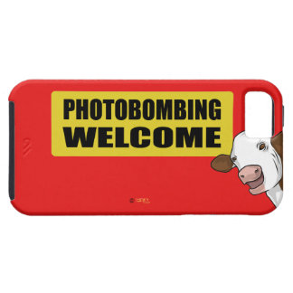 PhotoB iPhone 5 Cases