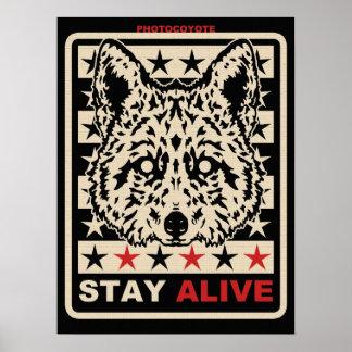 Photocoyote poster 2014 1