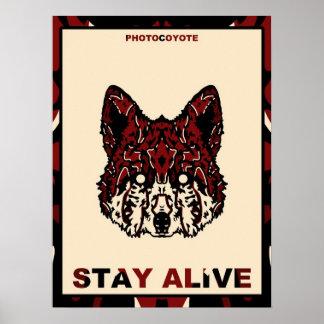 Photocoyote poster 2014 2