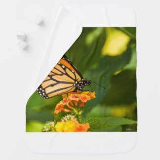 photograph of a butterfly baby blanket