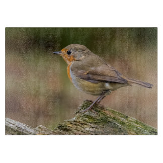 photograph of a close up robin cutting board