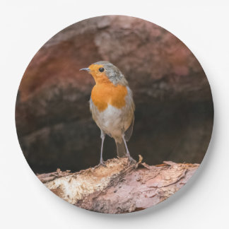 Photograph of a robin sitting on logs paper plate