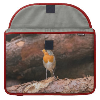 Photograph of a robin sitting on logs sleeve for MacBook pro