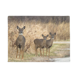 Photograph of deer family at the edge of the road. doormat