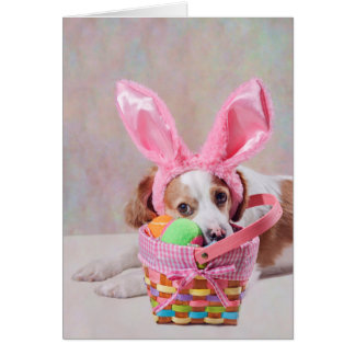 Photograph of Dog with Pink Nose and Bunny Ears Card